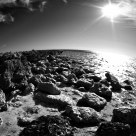 Alien world in BW